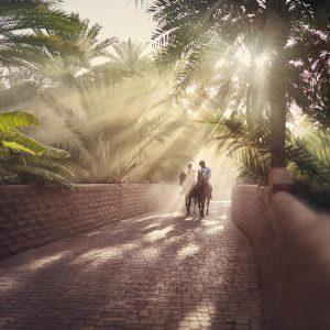 Al Ain Oase Abu Dhabi