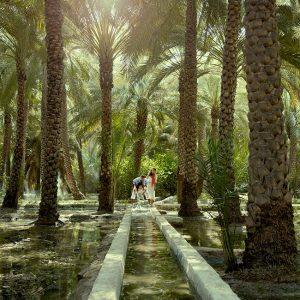 Al Ain Oasis Abu Dhabi